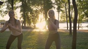 Two young pretty womans doing squats in park, weight loss, fitness models exercising, lens flare and beautiful view.  stock video footage