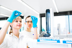 Two young researchers carrying out experiments in a lab Royalty Free Stock Photos