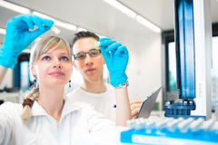Two young researchers carrying out experiments in a lab. (shallow DOF; color toned image stock photos