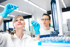 Two young researchers carrying out experiments in a lab shallow royalty free stock image