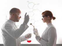 Two young scientists making a chemical experment Stock Photos