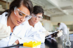 Two young scientists making an experiment. In a laboratory Stock Photo