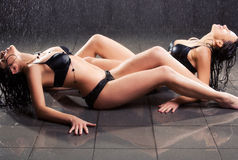 Two young sexy women Stock Image
