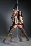Two young sexy women exercise pole dance Royalty Free Stock Photo