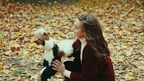Two young sisters and dog play in the park. Happy young girls playing with they dog in autumn park. Outdoors portrait stock video footage