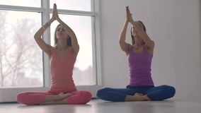 Two young smiling women practicing yoga together synchronously stock video