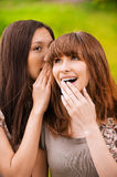 Two young speaking women Stock Photos