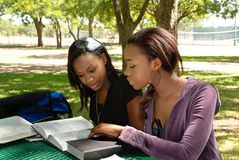 Two young students study at the park. Two black teen study their books at the park Stock Photos