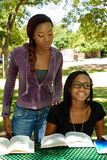 Two young students study at the park. Two black teen study their books at the park, the older girl is helping the younger girl Stock Photos