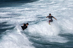 Two surf riders re-enter the crest of a wave stock photography