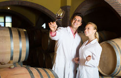 Two young wine house workers checking quality of product Stock Images