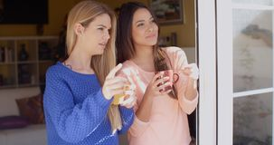 Two young woman enjoying refreshments. Two attractive young woman enjoying refreshments together standing in a window at home pointing to something outside stock video