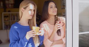 Two young woman enjoying refreshments. Two attractive young woman enjoying refreshments together standing in a window at home pointing to something outside stock video footage