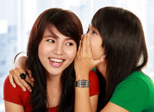 Two young woman sharing gossip Royalty Free Stock Image