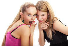 Two young woman wispering secrets. Isolated Stock Image