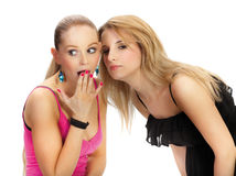 Two young woman wispering secrets. Isolated Stock Photos