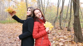 Two young women in the autumnal park and holding bunch of maple leaves.  stock footage