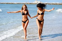 Two young women with beautiful bodies in swimwear on a tropical. Beach. Funny caucasian and arabic females wearing black bikini walking along the shore holding Royalty Free Stock Image