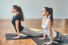 Two young women doing yoga asana cobra pose Royalty Free Stock Photo
