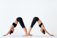 Two young women doing yoga asana Downward Facing Dog. Adho Mukha Shvanasana stock photos