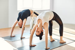 Two young women doing yoga asana upward bow wheel pose. Two young women doing yoga asana upward bow (wheel) pose. Urdhva dhanurasana stock photography
