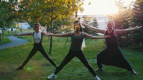 Two young women doing yoga asanas with coach in the park in the rays of the sun - One woman has long blue dreadlocks stock video footage