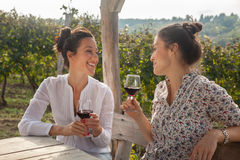 Free Two Young Women Drinking Wine Stock Image - 46906341