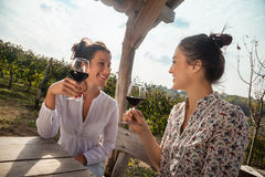 Two Young Women Drinking Wine Stock Photos