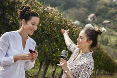 Two Young Women Drinking Wine Royalty Free Stock Photo