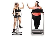 Two young women exercising and high-fiving each other. Full length profile shot of two young women exercising and high-fiving each other isolated on white stock photography