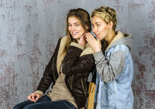 Two young women friends talking Stock Image