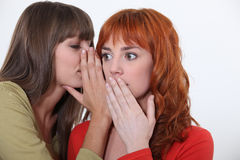 Two young women gossiping Royalty Free Stock Photography