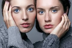 Two young women in gray sweaters on grey background. Beautiful g Royalty Free Stock Image