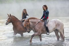 Two young women on horses stay in the lake royalty free stock image