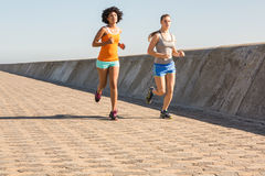 Two young women jogging together Stock Photos