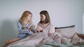 Two young women or a lgbt couple are drinking coffee in the bed. A beautiful young brunette is sitting on cozy bed with pastel pink sheets in her pajamas and stock video footage