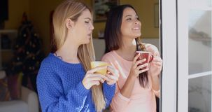 Two young women looking through a window. Two smiling attractive young women standing drinking coffee and looking through a window or open glass patio door stock video