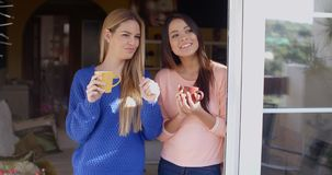 Two young women looking through a window. Two smiling attractive young women standing drinking coffee and looking through a window or open glass patio door stock footage