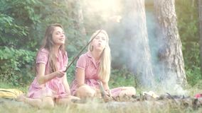 Two young women in pin up style having fun at a picnic in the park in the sunset. Summer, holidays, vacation, happy. People concept - smiling girlfriends stock video