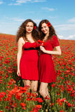 Two young women playing in poppies field Royalty Free Stock Photography