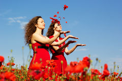 Two young women playing in poppies field Stock Photography