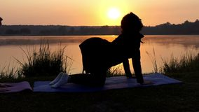 Two Young Women Stand on All Fours And Train Breathing on a Lake Bank at Sunset. Two Young Women Stand on All Fours and Train Yoga Cat Exercise Breathing in and stock footage