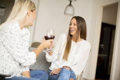 Two young women toasting with a red wine in the room Stock Image