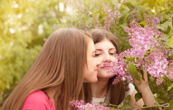 Two young women walking outside in a park Stock Photos