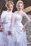 Two young womn in white dresses Stock Photography