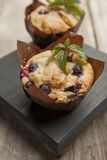 Two yummy blueberries muffins with sprig of mint. Yummy fresh blueberry muffins with a sprig of mint Stock Images