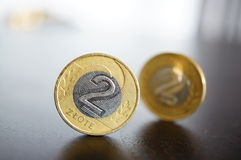 Two zloty coins Stock Photos