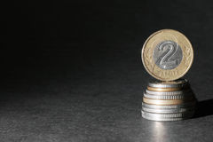 Two zloty Stock Photos