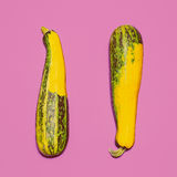 Two zucchini on bright pink background Royalty Free Stock Images