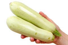 Two zucchini in hand Royalty Free Stock Images